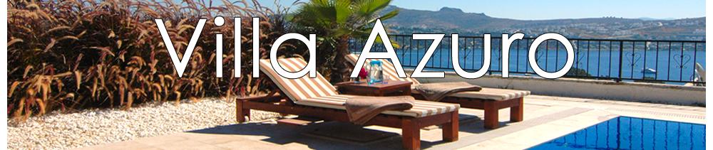 www.villaazuro.com